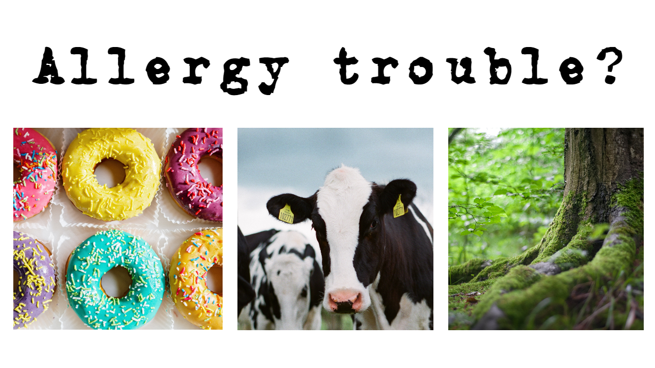 allergy trouble website